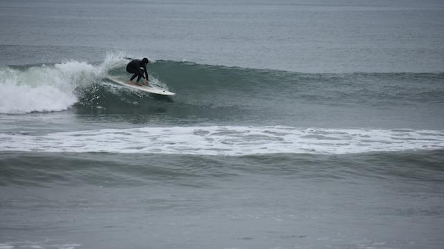 Tim Surfing copy