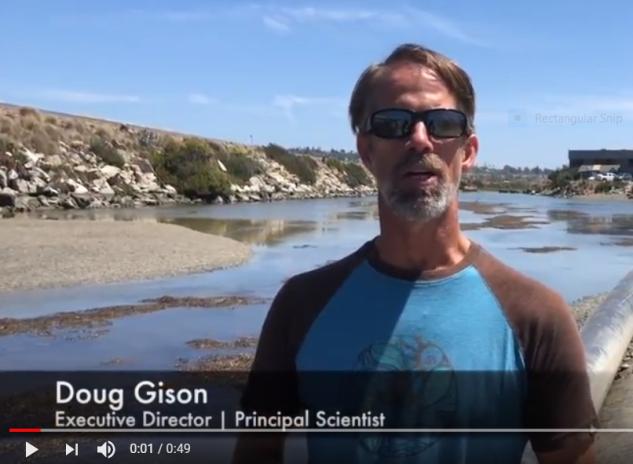 Doug GIbson Youtube.PNG