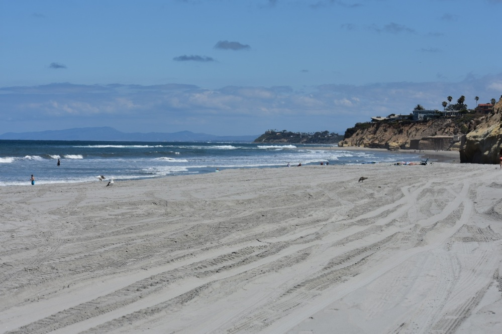 Fletcher Cove